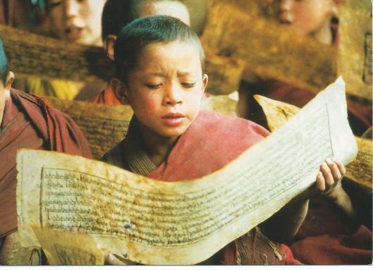 Jonge monniken in het Likir Gompa klooster. Noord-India (Tushita)