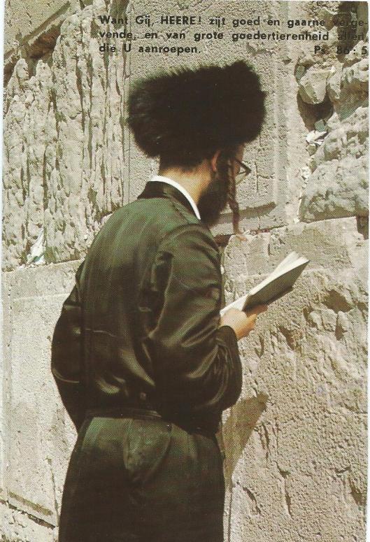 Orthodoxe Jood lezend en biddend bij de Klaagmuur in Jeruzalem