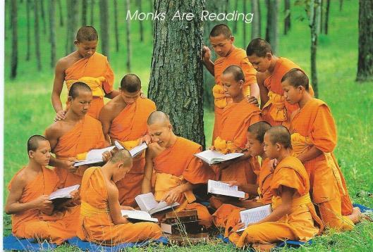 Groep lezende monniken rond een boom in Thailand
