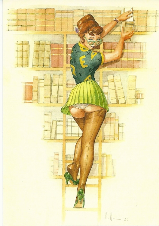 'Bibliothécaire', dessin de Patrick Hitte