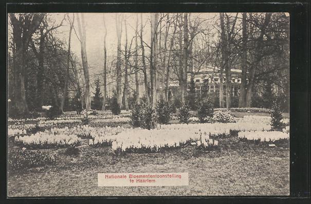 Ansichtkaart van de int. Bloemententoonstelling in de Haarlemmerhout, 1910.