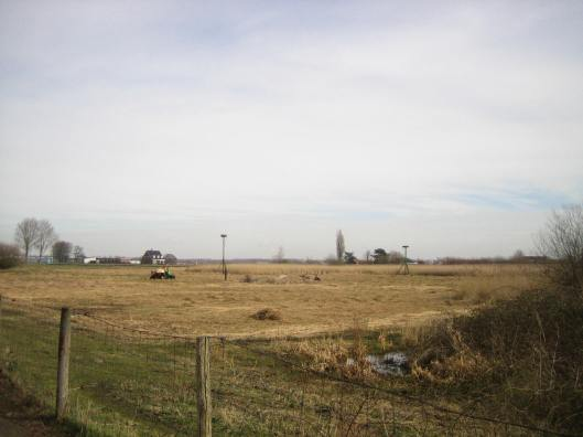 Hooiland tussen Ringvaart en Fazantenlaan in Heemstede met 2 ooievaarsnesten.