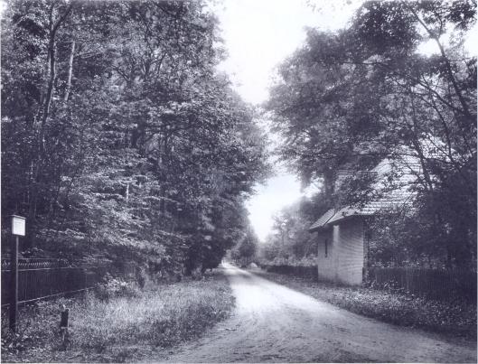 De Prinsenlaan vanaf de Herenweg omstreeks 1915