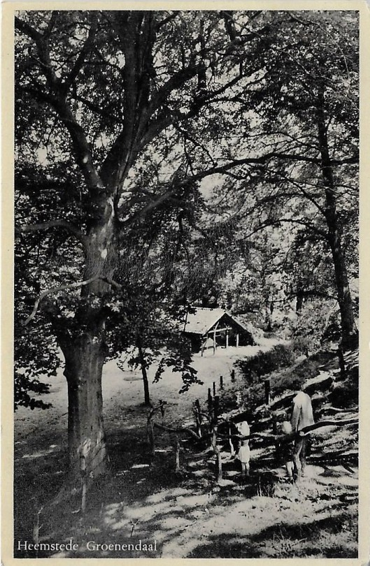 Trap naar de Belvedere op een ansichtkaart uit 1952 met op de achtergrond vermoedelijk een cafetaria tijdelijk in gebruik met het oog op de Flora-tentoonstelling van 1953 (Ruud van der Molen)