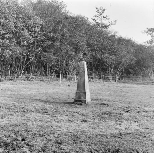 Gedenknaald ter herinnering aan het bezoek van koningin Wilhelmina tijdens mobilisatie aan Bennebroek in 1916 (foto G.J.Dukker)