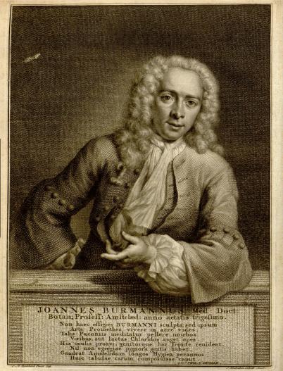 Johannes Burman,medicus en botanicus in Amsterdam. in 1779 op 73-jarige leeftijd gegraveerd door J. Houbraken naar een schilderij van Quinkhard. Het 8-regelige Latijnse vers is van de classicus J.Ph. d'Orville.