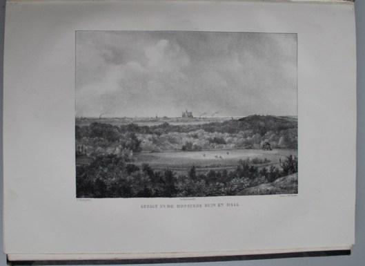 Gezicht van Duin en Daal richting Haarlem met aan de einder de Oude Sint Bavo (P.J.Lutgers, 1837-1840)