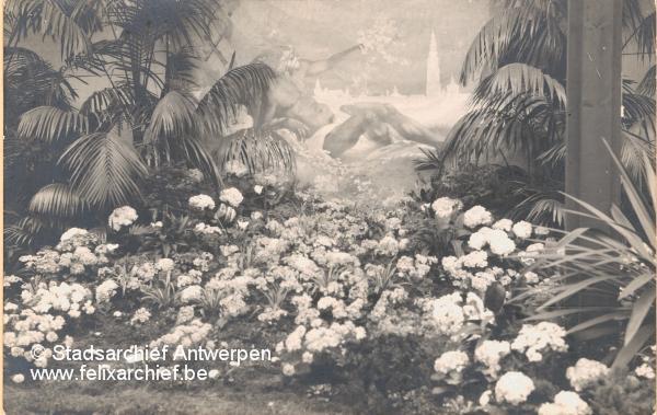 Belgische inzending Flora 1925 Heemstede