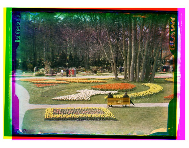 Floea-bloemententoonstelling in Groenendaal (foto B.F.Eilers)