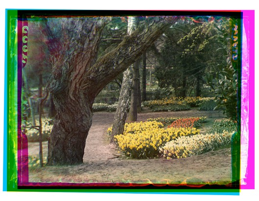 FLORA-bloemententoonstelling Heemstede 1935 (foto B.F.Eilers)