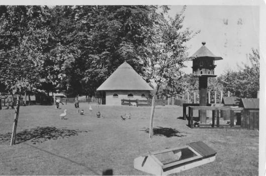 Kinderboerderij Groenendaal op een ansichtkaart uit 1951