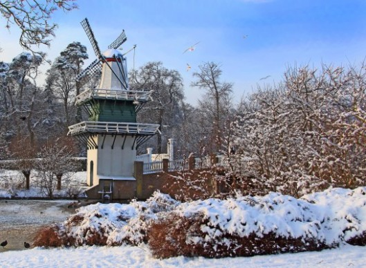 Groenendaal in de winter (foto Jan Tuyp)