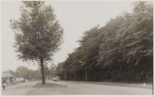 Glipperweg Heemstede, ter hoogte van Hagenduin (NHA)