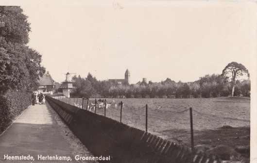 De hertenkamp van Groenendaal op een prentbriefkaart uit corca 1950