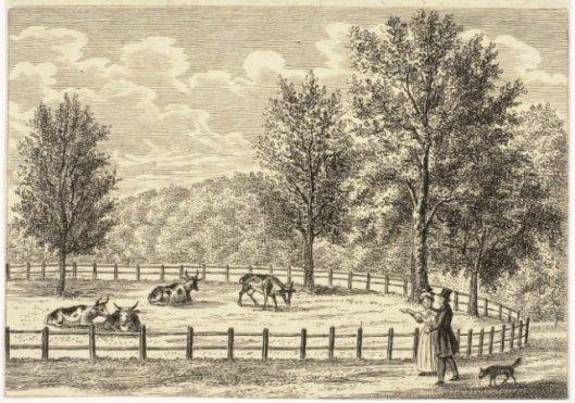 DE Koekamp (Frederikspark) op een gravure uit 1837 door Dirk Sluyter (1790-1852)