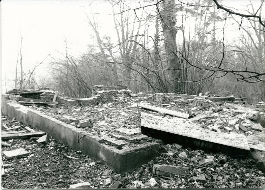 De nogmaals geruïneerde koepel van de Hartekamp op Hagenduin als gevolg van vandalisme in 1979.
