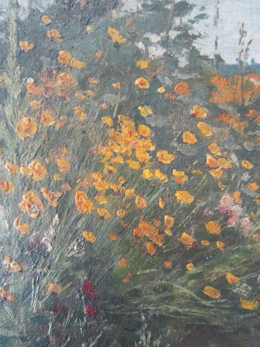 Bloemenveld te Heemstede. Schilderij door Anton L.Koster (1859-1937)