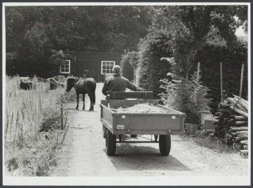 Foto van de gemeentelijke kwekerij in Groenendaal