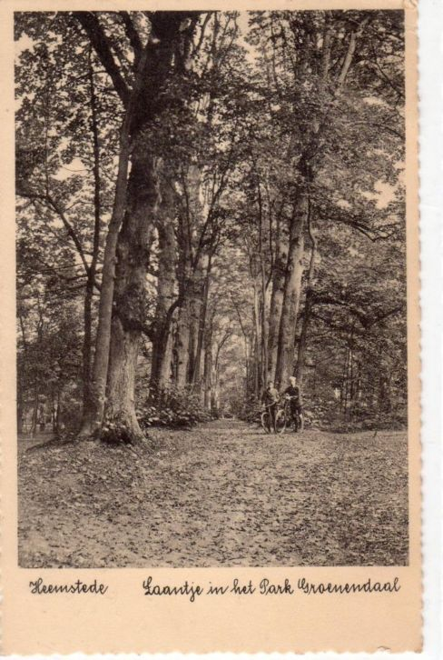 Laantje in Park Groenendaal Heemstede