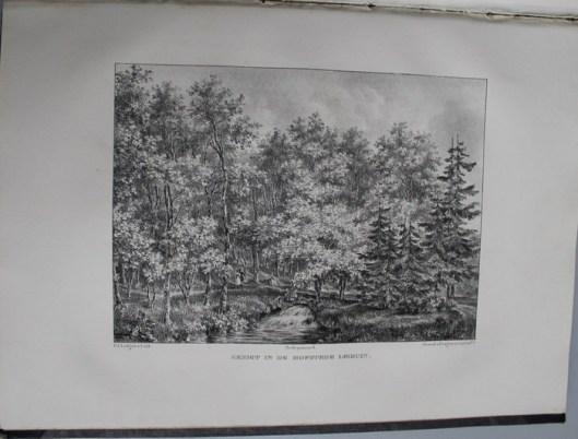 Gezicht in de hofstede Leiduin aan de Leidse Trekvaart, toebehorende aan mr.H.A.van Lennep uit Amsterdam (P.J.Lutgers, circa 1840)
