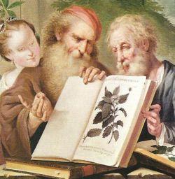 Twee geleerden (?) en de godin Flora (?) buigen zich over het boek 'Horuts Cliffortianus' . Schilderij door Jacob de Wit, aanwezig in Uppsala (Linnaeus Sociëteit)