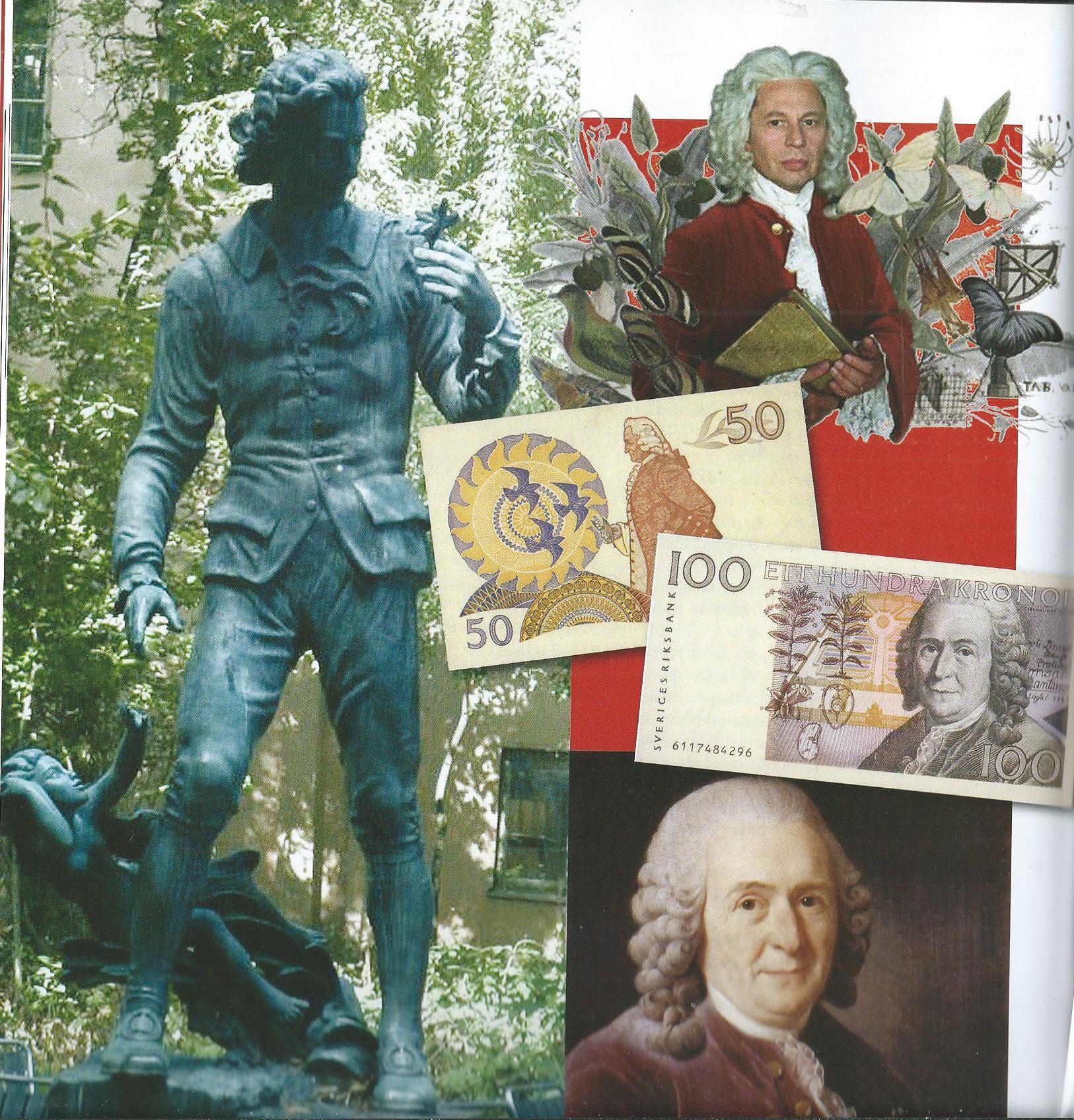 Linnaeus1.jpg
