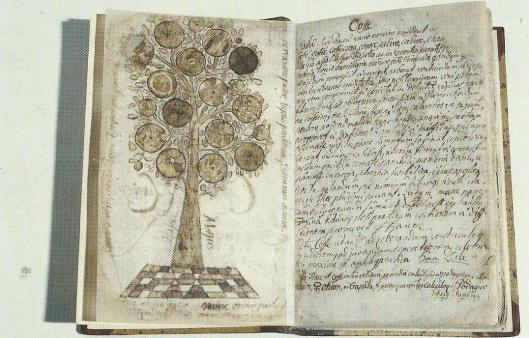 Linnaeus5