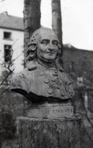 Borstbeeld van Linnaeus dat zich bevindt bij de universiteit van Leuven (foto uit 1941)