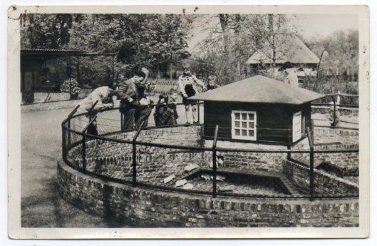 Prentbriefkaart van het marmottenhuis in kinderboederij Groenendaal