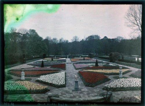 Bloemperken op de FLORA-tentoonstelling 1925 in Groenendaal (Geheugen van Nederland)