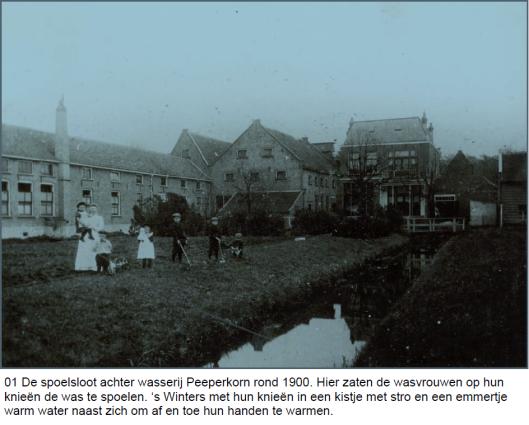 Peeperkorn4.png