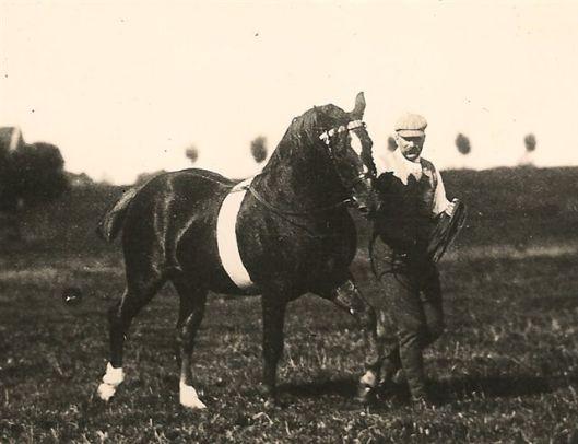 Het renpaard Pullaway (geboren in 1876) voorgeleid door Hendrik van Wickevoort Crommelin. 'Pullaway' is uitvoerig beschreven door Durk Minkema in 'Draven door de tijd'