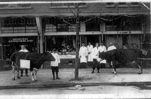 Slagerij Akkermans en drogisterij Kennemerland aan de Zandvoortselaan waar nu Australisch restaurant Southern Cross zit (Rekoert)