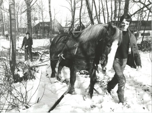 Ipenrode, januari 1979