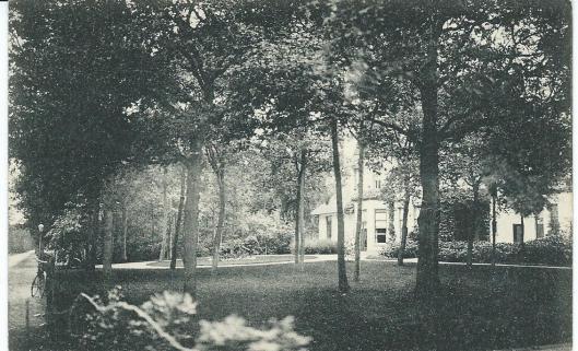 In 1881 is de Van Merlenlaan, aanvankelijk een breed pad, aangelegd en in 1904 is hier de eerste villa 'de Meerlhorst' gebouwd als notarishuis voor mr.C.J.Boerlage. Hier op een kaart circa 1920 uitgegeven door Nauta in Velsen