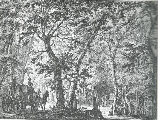 'Gezigt in de Haarlemmerhout', destijds deel uitmakend van Heemstede. Gravure naar J.Andriessen door J.de Wit, 1801.