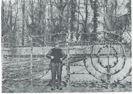 Tuinbaas Cornelis de Wilde van Huis te Manpad bij zijn aan elkaar geënte horizontale en ronde palmetten op een foto uit 1899