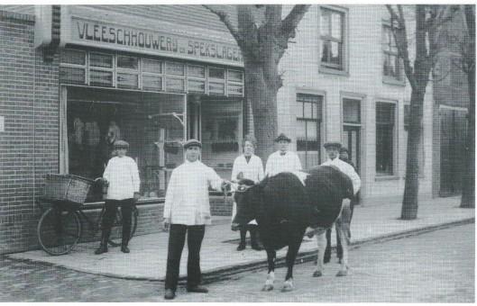 Vleeschhouwerij en spekslagerij J.van der Zijden (nu Vreeburg) aan de Camplaan. Aankomst van de Paaskoe in 1923, gereed voor de slacht (bij Hageveld). In het midden de slager met echtgenote, daaromheen personeel. A;s een 'dikbil' een prijs had gewonnen ging men daarmee door het dorp lopen. Rechts het vroegere huis van dokter J. Beeker, later van Brugge en vervolgens Van Bakel