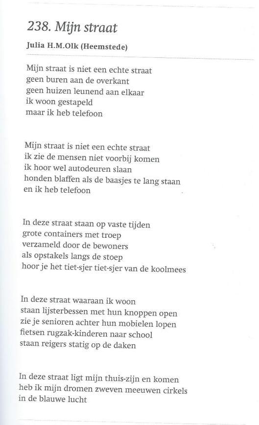 'Mijn Straat' door Julia H.M.Olk