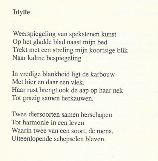 'Idylle' door Karin Ottenhoff