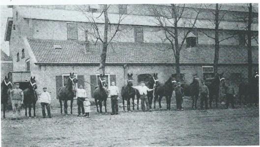 Presentatie van fokmerries van A.H.van Wickevoort Crommelin op de Cruquiushoeve (The Horse Review, 1908)