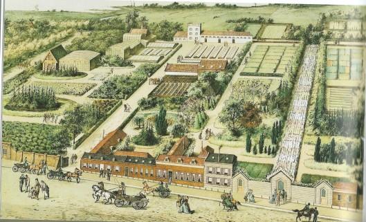 Overzichtskaart van kwekerij De Bloemhof van bloemisterij Krelage aan de Kleine Houtweg begin 1900