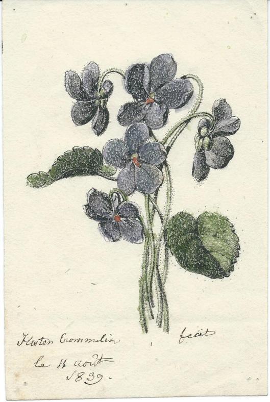 Kindertekening van Hester van Wickevoort Crommelin, 15 augustus 1839