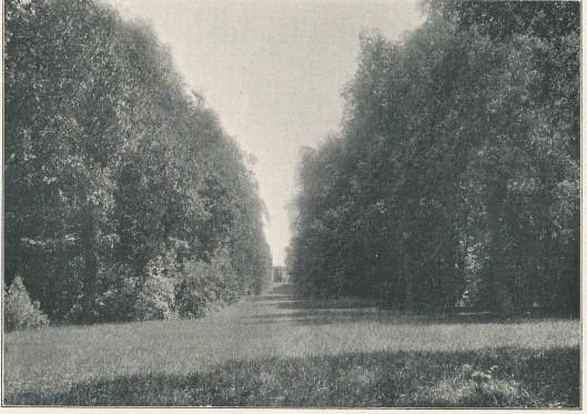 Overplaats van de Hartekamp, tussen Herenweg en Glipperweg, 1901
