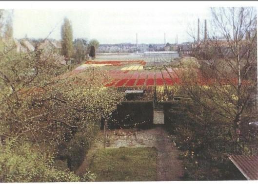 Nog een foto van bollenvelden tussen de Blekersvaartweg en Burgemeester van Lennepweg omstreeks 1961