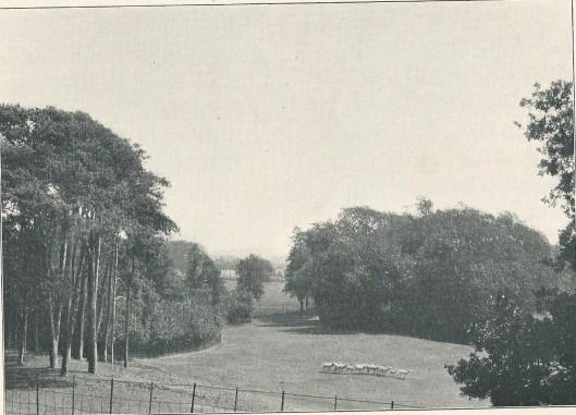 De hertenbaan van de Hartekamp in 1901