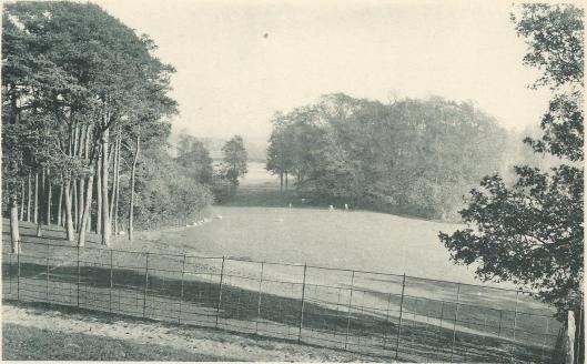 Overplaats van de Hartekamp, ten oosten van de Herenweg. (lichtdruk van Kleinmann, Haarlem 1902)