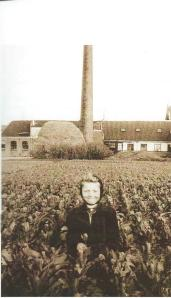 Piet Beelen in het bollenveld van vader Theo Beelen in 1955. De grootvader had een wasserij aan de Blekersvaartweg (foto uit 'Bloeiende Bedrijvigheid')