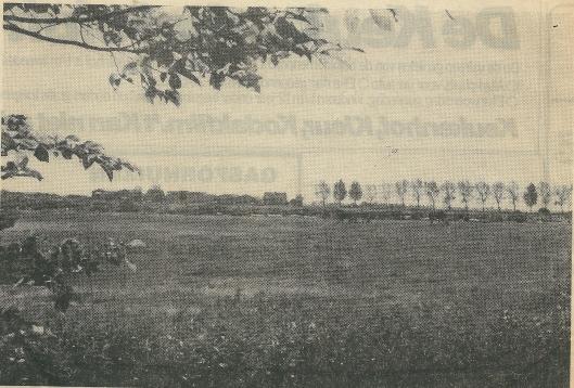 Een foto uit het Haarlems Dagblad van de weilanden tussen Glipperdreef en Ringvaart waar later het plan Merlenhoven zou verrijzen.