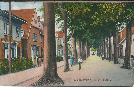 Ansichtkaart van Koediefslaan omstreeks 1930